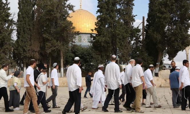 القدس المحتلة: مستوطنون يقتحمون الأقصى وتحذير من تسجيل أراض بالطابو الإسرائيلي
