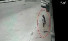 عنبتاوي: جرائم قتل النساء بمسؤولية الشرطة والمجتمع