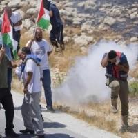 """""""حملة الدولة الديمقراطية الواحدة"""" تدعو لفرض عقوبات على إسرائيل"""