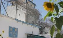 إصابة أسيرين بالسرطان في سجون الاحتلال