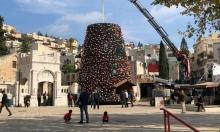 نصب أكبر شجرة للميلاد في البلاد بالناصرة
