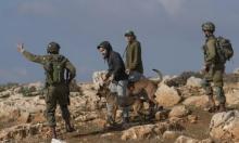 توقع تصعيد أمني: الاحتلال يعزز قواته في الضفة الغربية