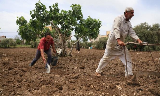 الاحتلال يستولي على 1008 دونمات من أراض شرق قلقيلية