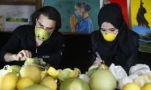 الصحة الفلسطينية: 30 وفاة و978 إصابة كورونا جديدة