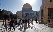 الاحتلال يكثّف مشاريع تهويد الأقصى ومُطالبة بتدخل الملك عبد الله