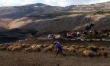"""لبنان: إطلاق سراح الراعي الذي اختطفته إسرائيل و""""يونيفيل"""" تفتح تحقيقا"""