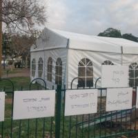 شفاعمرو: خيمة مناهضة للعنف والجريمة قبالة مركز الشرطة