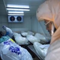 الصحة الإسرائيلية: 21 وفاة و8174 إصابة بكورونا الأربعاء