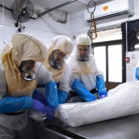 تراجع فحوصات كورونا: 998 حالة وفاة بالبلاد خلال يناير الجاري