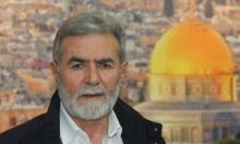 """""""الجهاد الإسلامي"""" تجري مباحثات في موسكو"""
