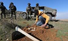 سلفيت: عشرات الإصابات بقمع الاحتلال فعالية لزراعة الأشجار