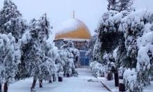 راصد جوي: عاصفة القدس الثلجية يوم الأربعاء المقبل