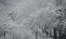 الثلوج تطمر اليونان
