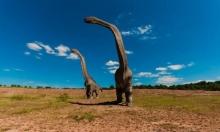 نظرية جديدة: هذا ما تسبب بانقراض الديناصورات