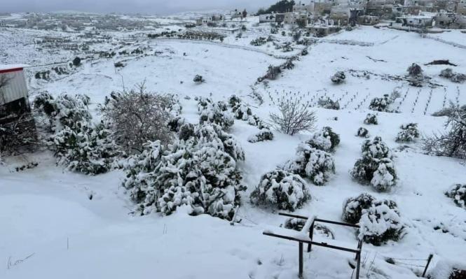 لأول مرة منذ 6 سنوات: الجبال بالضفة والقدس تكتسي بالثلوج