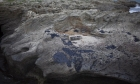 قطران بشواطئ البلاد: الأمن الإسرائيلي فوجئ باتهام إيران بإرهاب بيئي