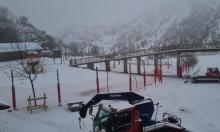 الثلوج تتساقط على جبل الشيخ مجددا