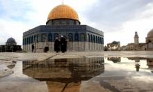 مئات المستوطنين يقتحمون المسجد الأقصى المبارك