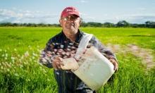 دراسة: تضاعُف خسائر المحاصيل بأوروبا ثلاث مرات جرّاء الجفاف في 50 عاما