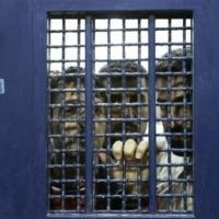 """عشيّة يوم """"الأسير""""؛ 4500 معتقل في سجون الاحتلال"""