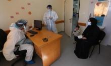 19 وفاة وألف و774 إصابة بكورونا في الضفة والقدس وغزّة