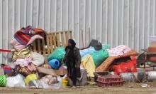 عام كورونا في النقب: هدم وتشريد وتدمير للمحاصيل الزراعيّة