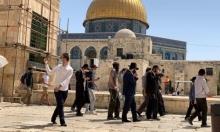 98 مستوطنًا يقتحمون المسجد الأقصى