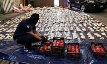 لبنان: تحديد هويات المتورطين بتهريب المخدرات للسعودية