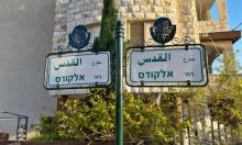 تسمية الشوارع في مجد الكروم: مشروع لتعزيز الانتماء والهوية الجماعية