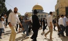 """المستوطنون يحشدون لاقتحام الأقصى في 28 رمضان ودعوات لـ""""الرباط"""""""