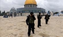 الاحتلال سيتيح جولات استفزازية للمستوطنين في القدسيوم الإثنين