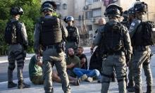 أبو شحادة لمفوضة الأمم المتحدة: نطلب الحماية الدولية للمواطنين الفلسطينيين بالداخل