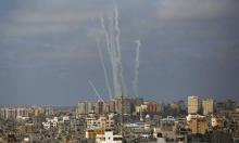 نفوق 8 آلاف خلية نحل جراء العدوان على غزة