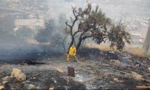 اندلاع حرائق بالقرب من حيفا وعسفيا والفريديس