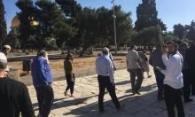 مستوطنون يقتحمون الأقصى واعتقال 19 فلسطينيا بالضفة
