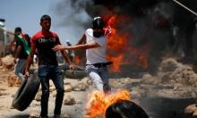 إصابات بالرصاص وبالاختناق خلال مواجهات مع الاحتلال في بيتا وبيت دجن