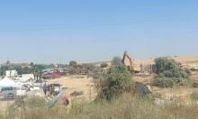 هدم وإعدام أشجار زيتون في رهط