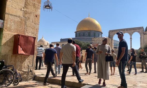 مستوطنون يقتحمون الأقصى بيوم عرفة واعتقالات بالضفة والقدس