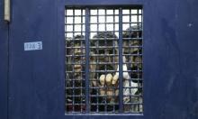 14 معتقلا إدرايا يواصلون إضرابهم عن الطعام بسجون الاحتلال