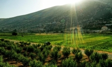 حوار   ضربة الشمس: كيف يُصاب الأشخاص بها وما هي سُبُل الوقاية منها؟