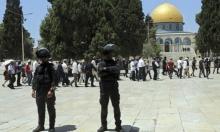 145 مستوطنا يقتحمون باحات المسجد الأقصى