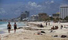 المكسيك: غريس يتراجع من إعصار إلى عاصفة استوائية