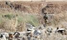 الجيش الإسرائيلي يحبط تهريب أسلحة على الحدود الأردنية