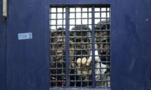 80 أسيرا يعتصمون في سجن النقب رفضا للتنكيل بهم