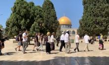 بعد رفع العلم الإسرائيلي ونفخ البوق: ما يجري بالأقصى غير مسبوق