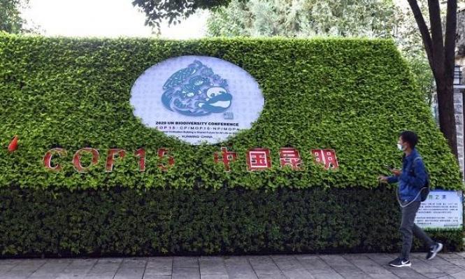 """195 دولة تتبنّى """"إعلان كونمينغ"""" لحماية التنوع البيولوجيّ"""