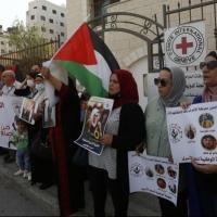 ثلاث أسيرات يواصلن الإضراب الإسنادي